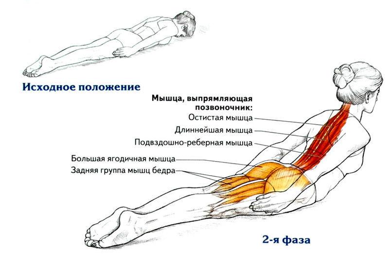 Омолаживающие 8 упражнений для укрепления спины
