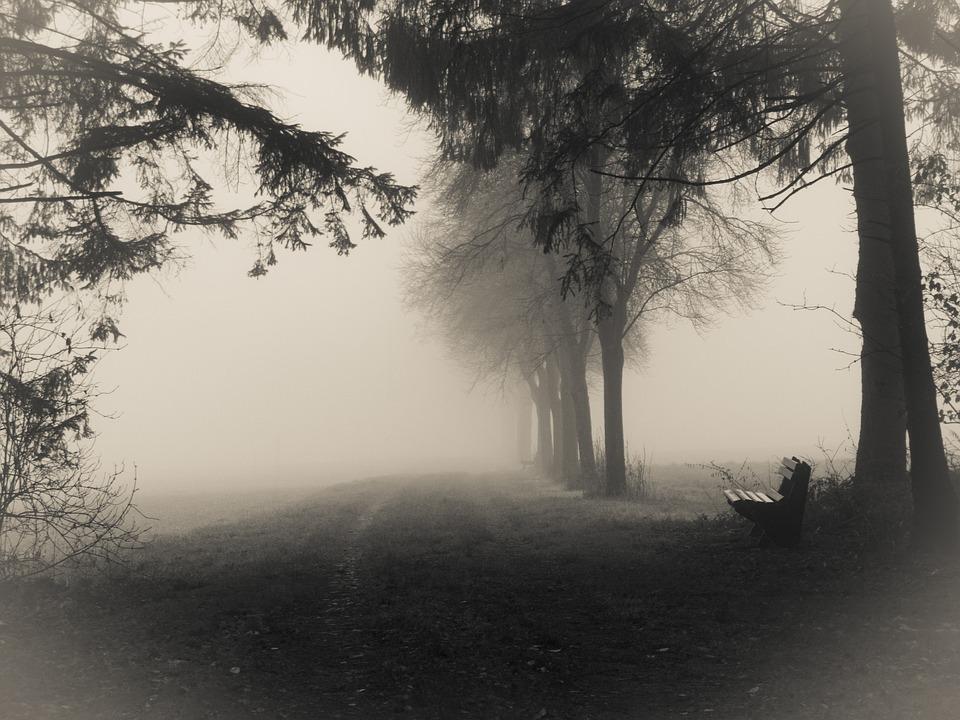 «По улице моей который год…» — задевающее душу стихотворение Беллы Ахмадулиной