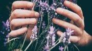 «Утро пахло манной кашей» — самая ароматная проза Мальвины Матрасовой