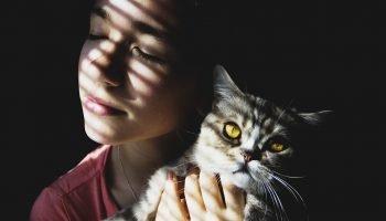 «Кота заводят, чтобы…» — теплое стихотворение всем котам и их хозяевам